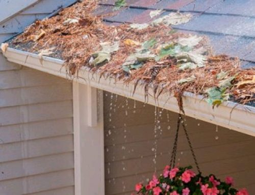 Avoid Roof/Soffit Damage – Get Gutters Cleaned and New Gutter Guards!